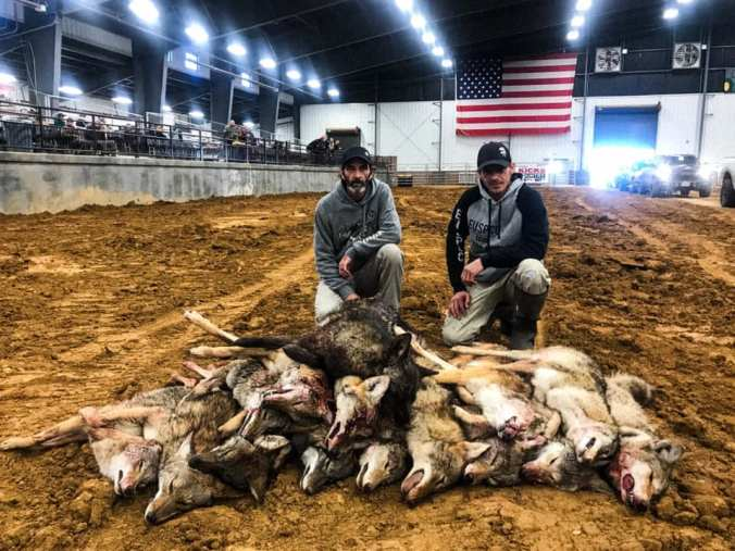 Undercover Investigations Expose Wildlife Killing Contests In The US post thumbnail image